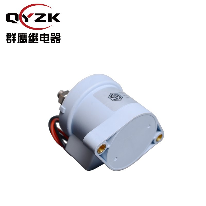 YSEV300-24VDC继电器